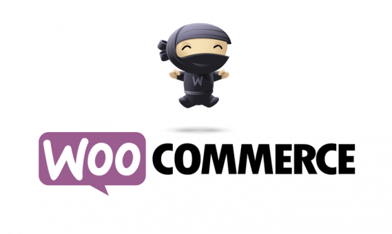 Transformez votre site Wordpress en site e-commerce