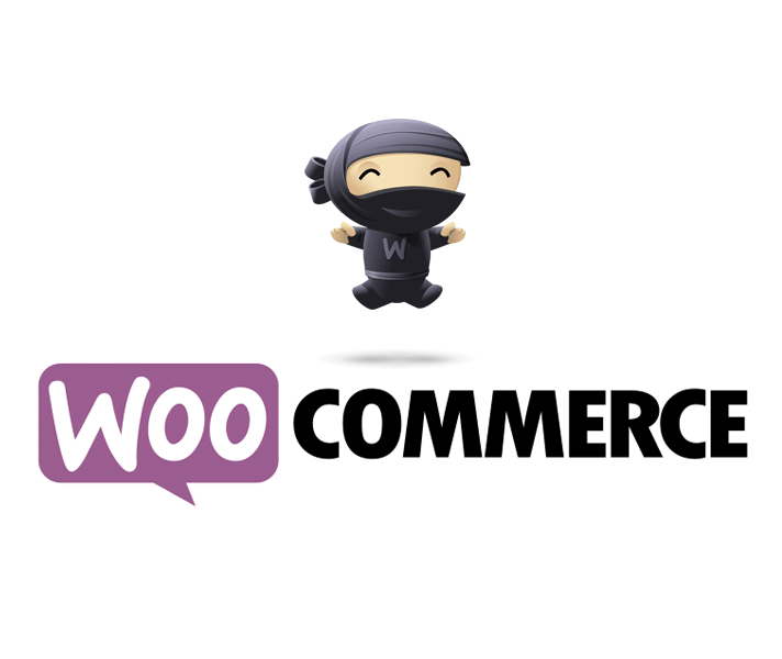 Woocommerce, transformez votre WordPress en site e-commerce